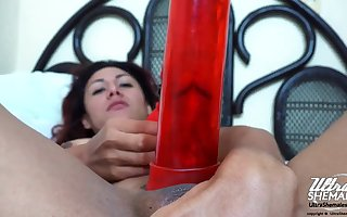 First time Tranny Avi with her dildo